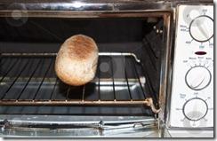 cutcaster-photo-100696065-A-bun-in-the-oven